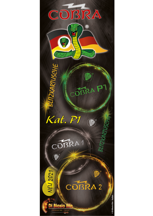 digital-kit-P1-GERMANY